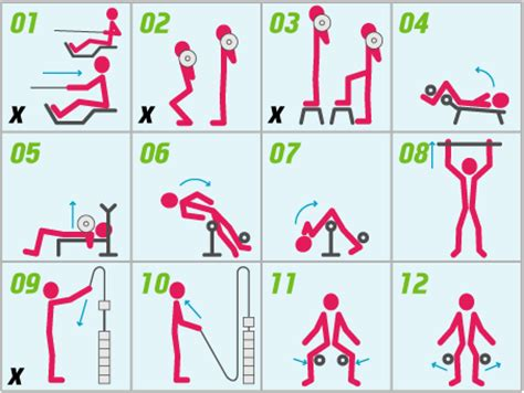 musculation et ou endurance page 3 onlinetri