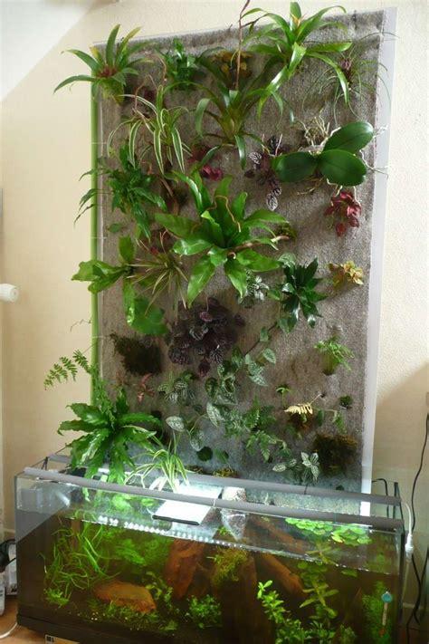 mon premier mur v 233 g 233 tal sur aquarium