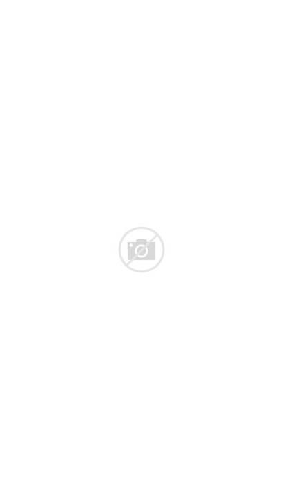 Sarajevo Ali Mosque Pasha Bosnia Mosques Wikipedia