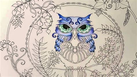 enchanted forest coloring book owl part  youtube