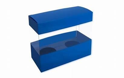 Plastic Packaging Box Biz Boxes Gift Pt