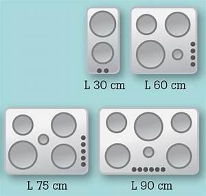 Four Et Plaque De Cuisson : les plaques de cuisson leroy merlin ~ Melissatoandfro.com Idées de Décoration