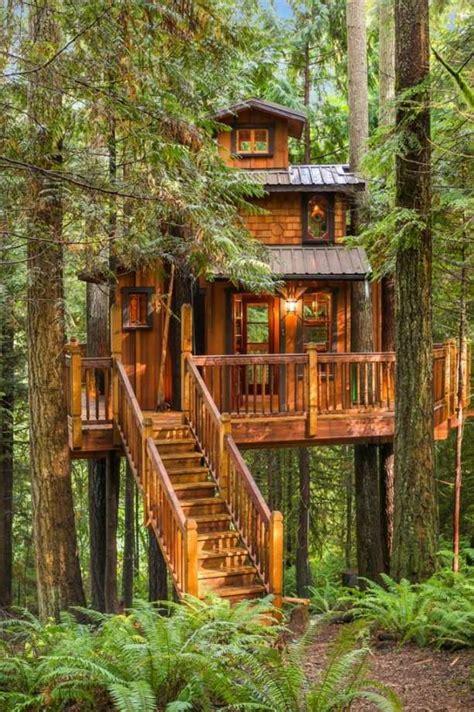 gorgeous tree house   dream bunkie cottage life
