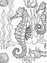 Coloring Adults Seahorse Pages Seahorses Voor Volwassenen Kleuren Divyajanani sketch template