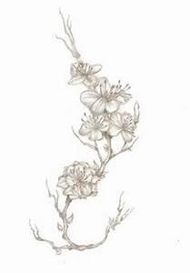 Dessin Fleur De Cerisier Japonais Noir Et Blanc : fleurs de cerisier tatouage noir et blanc ~ Melissatoandfro.com Idées de Décoration