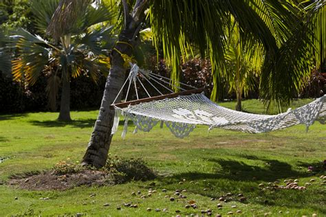 Hamac De Jardin Hamac Jardin Mod 232 Les Dimensions Installation Prix Ooreka