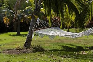 Accrocher Hamac Arbre : hamac jardin mod les dimensions installation prix ~ Premium-room.com Idées de Décoration