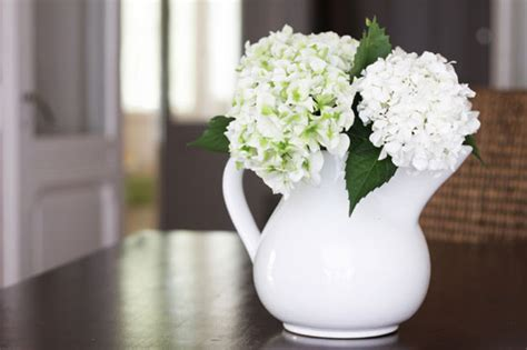 Flowers For Home Decor Modern With Image Of Flowers For Price Of Wood Flooring In Philippines Vinyl Over Hardwood Floor Sales Regina Trade Gerrards Cross Company Newcastle Suppliers Bristol Floating Linoleum Installation Cheapest