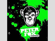 Peter Fox Stadtaffe Cover Buch BildFoto Fan Lexikon