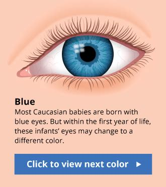 eye color facts human eye color chart with facts