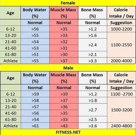 muscle mass percentage  charts fitness sports bodybuilding pinterest