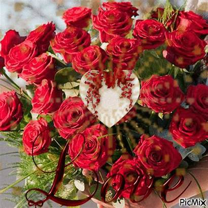 Picmix Rosas Flowers Roses Květiny Divoke Amor