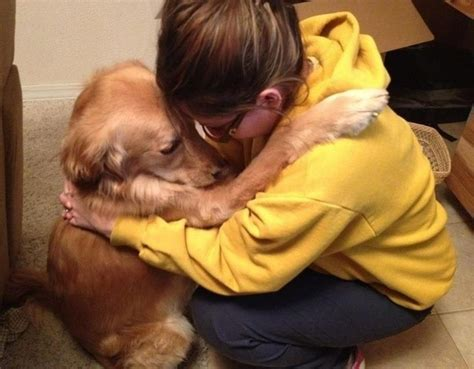 Dogs That Hug
