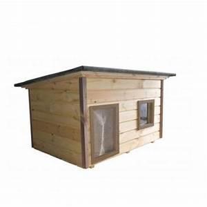 Niche Grand Chien Xxl : grande niche pour 2 chiens ou grand chien niches 2655416 ~ Dailycaller-alerts.com Idées de Décoration