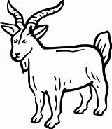 Goat Billy Coloring Pages Template Tocolor Button Through sketch template