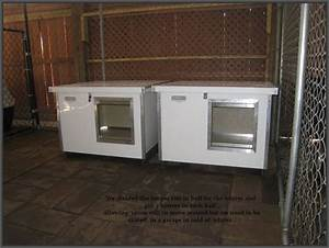 Gregoire39s labrador retrievers indiana for Best insulated dog house for cold weather