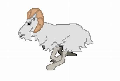 Goat Animation Clipart Transparent Animated Goats Don