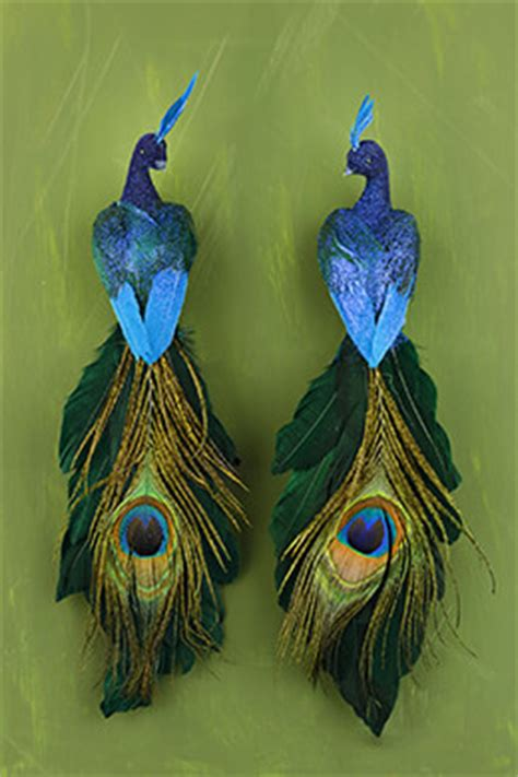 blue peacock birds set