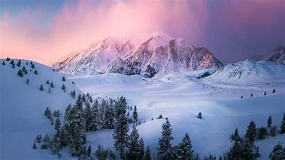 Eastern Sierra Winter Backiee
