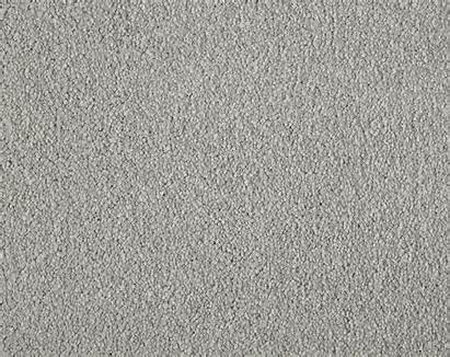 French Grey Primo Carpet Ultra Cormar Ranges