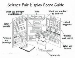 1000  Images About 1st Grade Science Fair Projects On