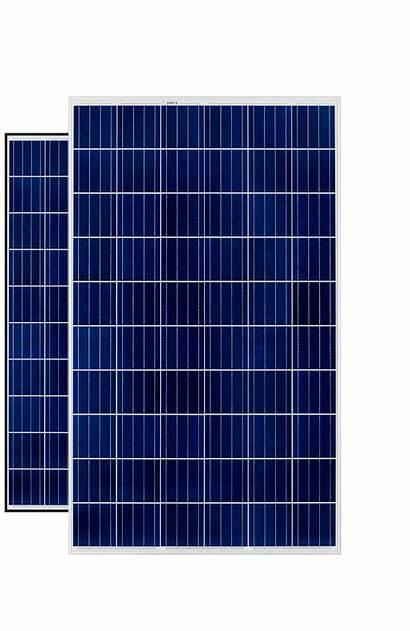 Rec Peak Energy Panels Blk エナジー ピーク