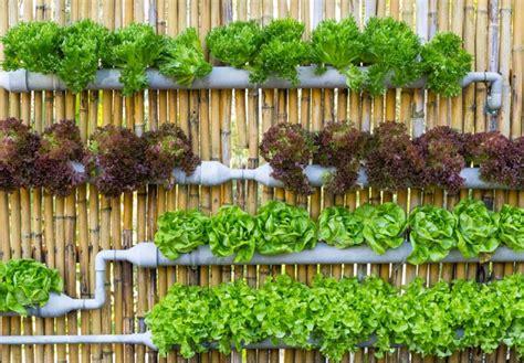vertical vegetable garden diys and how tos 25 creative