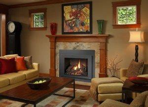 save money  wood  gas fireplace inserts energy savers