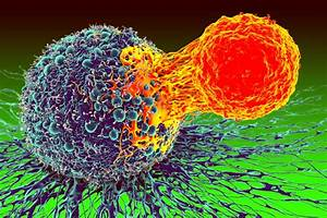 Multifunctional Potency Assays For Cancer Immunotherapy