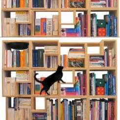 Take The Time To Build Cat Shelves: Fun For Both You And