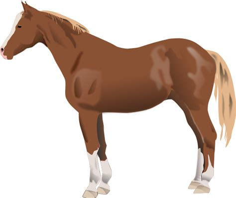 clipart mare clip free clipart of horses mares