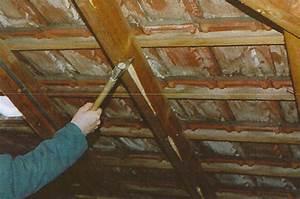 Traitement Bois Charpente : traitement charpente bois pour une toiture saine ~ Edinachiropracticcenter.com Idées de Décoration