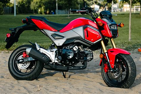 Two Weeks With A Honda Grom