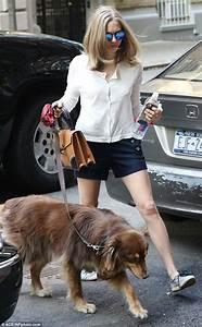 Amanda Seyfried in tailored shorts while walking dog in ...