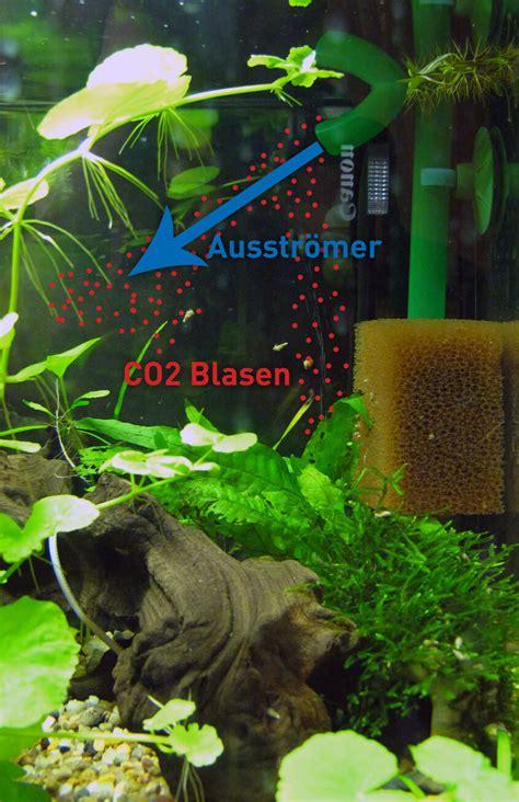 beste platzierung eines  diffusors im aquarium
