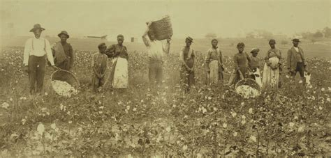 evolution  slavery equal justice initiative