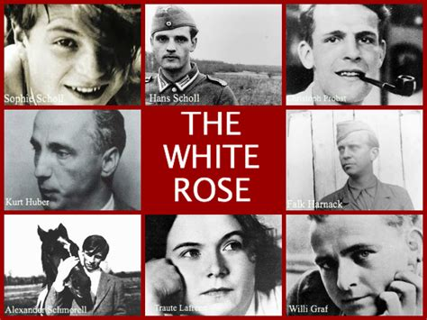 sophie scholl   white rose creative clever  classy