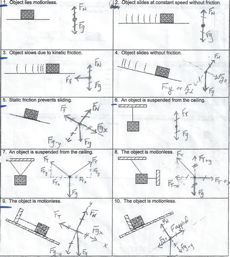 pictures diagrams worksheet getadating
