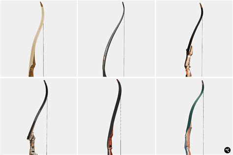 Artful Archers: The 7 Best Recurve Bows | HiConsumption