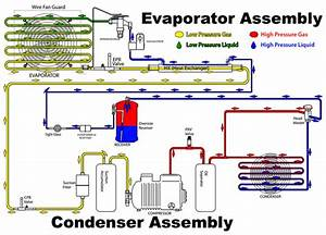 Refrigeration World  Vapour Compression Cycle