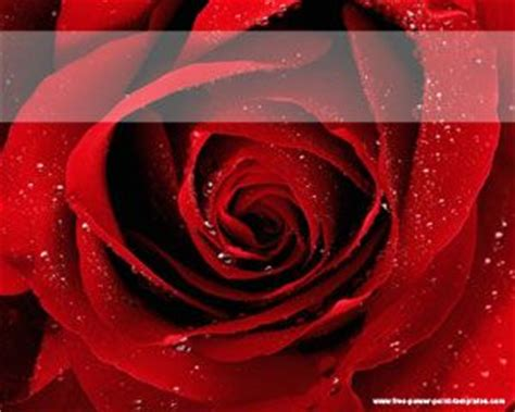 roses  template  powerpoint