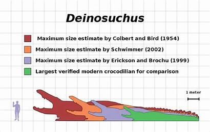 Comparison Deinosuchus Chart Liopleurodon Estimate Fossil Sea