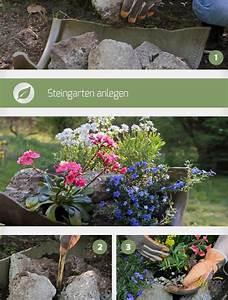 Steingarten Anlegen Anleitung : steingarten anlegen anleitung f r mini steingarten ~ Whattoseeinmadrid.com Haus und Dekorationen