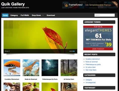 gallery wordpress themes   neoncollections