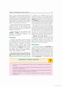 Biochemistry - U Satyanarayana