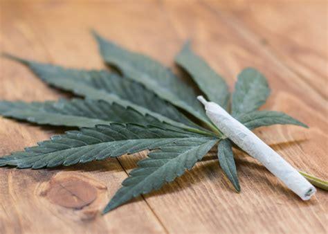 investing  marijuana