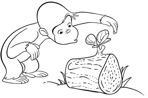 Free Colouring Pages Printable Monkey Coloring Pages