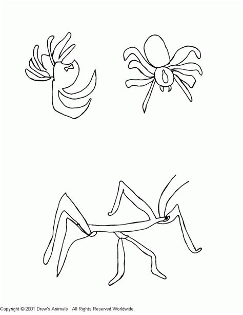 Coloring Pages Black Widow by Black Widow Coloring Pages Coloring Home