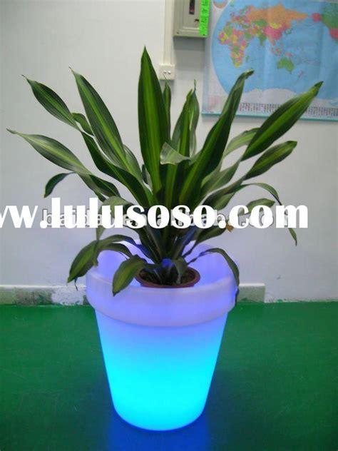 decorative plant pots for sale decorative plant pots for