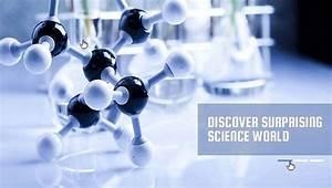 17  Laboratory Website Templates  U0026 Themes